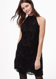 Velvet Lace Halter Dress
