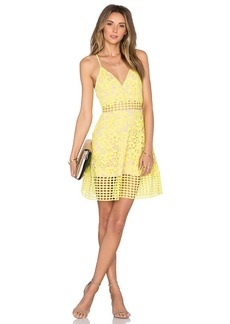 Lovers + Friends Bellini Dress