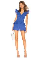 Lovers + Friends Frankie Mini Dress