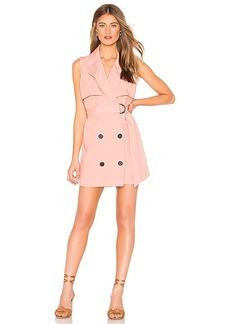 Lovers + Friends Karina Mini Dress