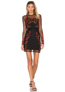 Morella Dress