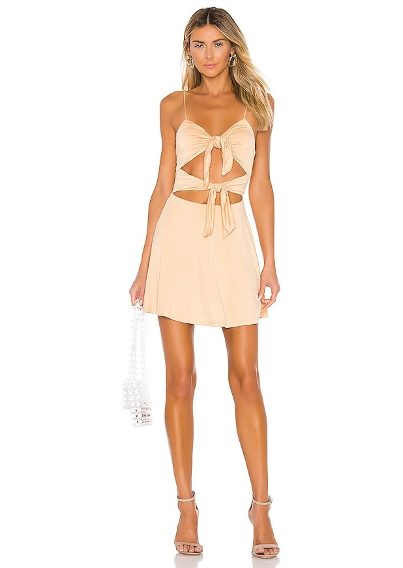 Lovers + Friends Nate Mini Dress