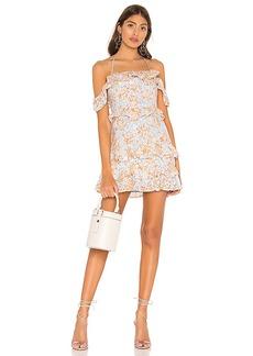Lovers + Friends Poppy Mini Dress
