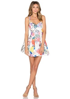 Lovers + Friends x REVOLVE Abbie Fit & Flare Dress