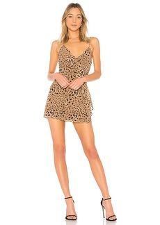 LPA Dress 252