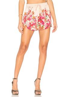 LPA Shorts 194