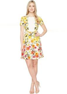 Maggy London Jewel Neckline Dress with A-Line Skirt