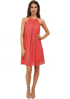 Maggy London Oval Stripe Lace Trapeze Dress