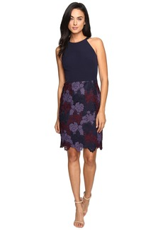 Maggy London Tri-Tone Lace and Crepe Sheath