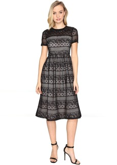 Maggy London Victorian Stripe Lace Fit and Flare