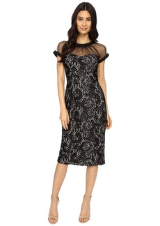 Maggy London Spanish Scroll Lace llusion Sheath Dress