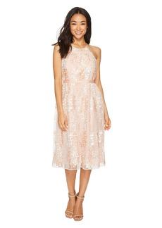 Maggy London Trailing Daisy Mesh Halter Dress