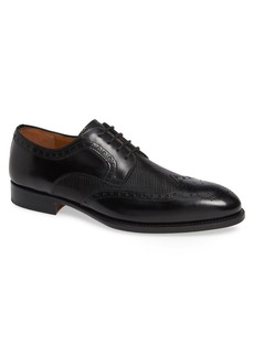 Magnanni Hampton Wingtip Oxford (Men)