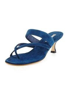 Manolo Blahnik Susa Suede Low-Heel Thong Sandal