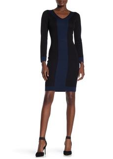 Max Studio V-Neck Colorblock Sweater Dress