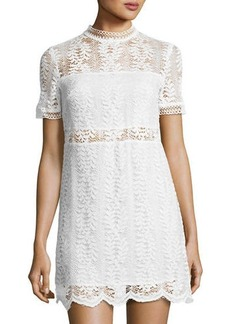 Mink Pink Tell-Tale Lace Tee Dress