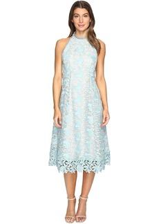 Nanette Lepore Bellisimo Dress