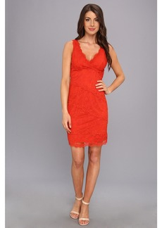 Nicole Miller Marion Lace Dress