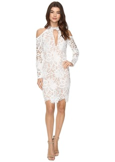 Nicole Miller Sunflower Lace Kendall Dress
