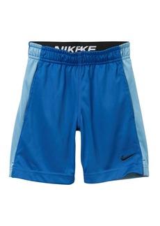 Nike Dry Fly Shorts (Toddler Boys)