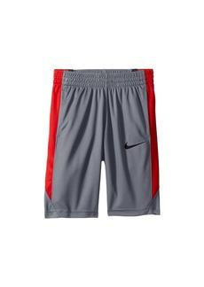 Nike Dry Shorts Avalanche (Little Kids/Big Kids)