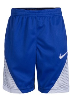 Nike Colorblocked Shorts, Little Boys