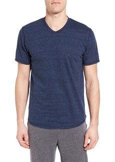 Nordstrom Men's Shop V-Neck T-Shirt