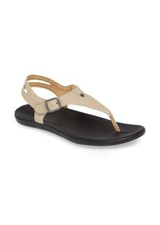 OluKai 'Eheu V-Strap Sandal (Women)