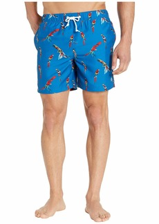 Original Penguin Parrot Elastic Volley