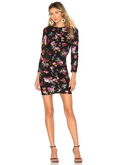 Parker Adrienne Dress