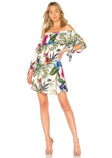 Parker Alexis Dress