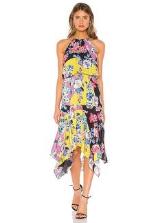 Parker Cecelia Dress