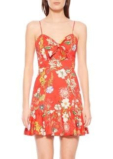 Parker Dany Floral Dress