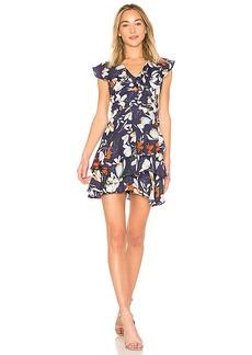 Parker Dorthy Dress