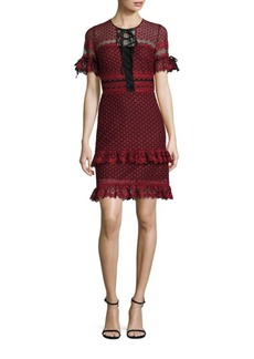 Parker Emilia Ruffle Lace Dress