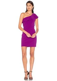 Parker Haiden Mini Dress