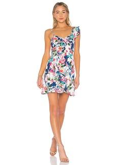 Parker Knox Dress