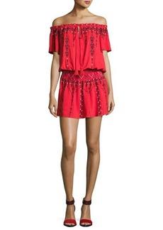 Parker Tammy Embroidered Smocked-Waist Mini Dress