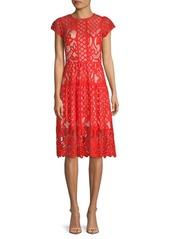 Parker Talulah Lace Midi Dress