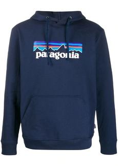 Patagonia logo hoodie