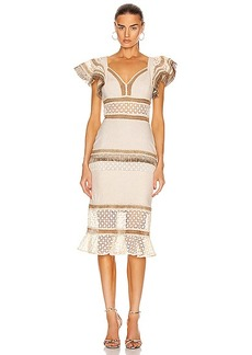 PatBO Lace Fringe Fitted Midi Dress