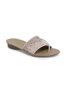 Paul Green Pixie Slide Sandal (Women)