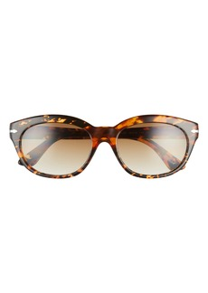 Persol 55mm Cateye Sunglasses