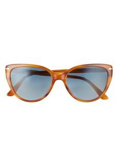 Persol 55mm Polarized Sunglasses