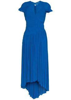 Preen milly pleat maxi dress