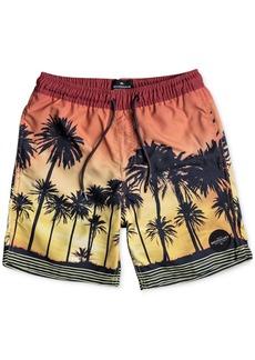 Quiksilver Little Boys Sunset Vibes Swimsuit