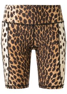 R13 cheetah print bicycle shorts