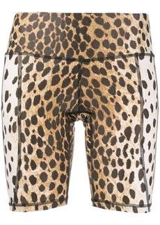R13 cheetah-print biking shorts