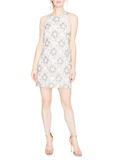 Rachel Roy Sleeveless Lace Shift Dress