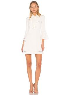 Rachel Zoe Wynn Mini Dress
